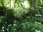 市の管理する緑地帯について