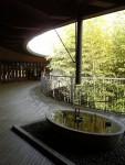 牧野植物園(2)