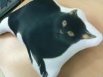 オリジナルの黒猫クッションを制作しました