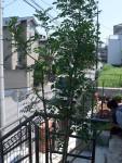 施工協力店募集/植栽工・下草植込工・ガーデンプランナー