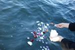 海洋散骨体験に行ってきました その3