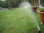 お庭の管理、水やり管理に自動散水システム