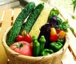 ビタミンC欠乏は人類の宿命!なぜ我々は野菜を食べ続けなければならないか?