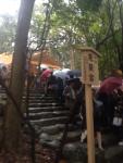 伊勢神宮では日本の平和をお祈りしました。