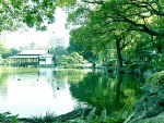 A151.パークホームズ清澄白河、リバーサイドビューと清澄庭園の休日
