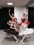 ミストラルバレエスタジオより9月のレッスンスケジュール。1月24日船橋市民文化ホールでの舞台参加者募集中