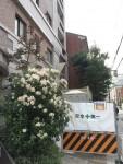 大規模修繕工事 京都