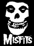 In Praise of Misfits – 周りに合わさない生き方の勧め