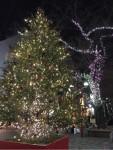 今年の自由が丘のクリスマス