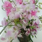 桜色デンファレ