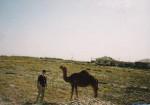 トルクメニスタンでラクダと一緒にシャッターに収まる!