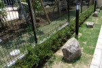松戸老人ホームの庭 沿道沿いの石列