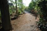老人ホームのヒーリングガーデン 「森の中の小道」