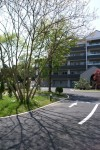 「自然樹」 老人ホームのヒーリングガーデン
