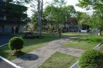 「芝生の緑」 老人ホームのヒーリングガーデン