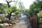 「池の橋」 老人ホームのヒーリングガーデン