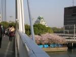 大阪造幣局の桜通り抜け 5 造幣局から見る大阪城