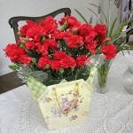 【母の日】カーネーション花鉢ギフト 2000円 送料無料