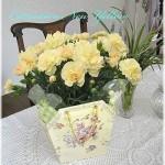 【母の日】カーネーション花鉢ギフト 2300円 送料無料