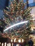 クリスマスツリーは・・・