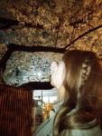 脱出コース♡凄腕女装で満開夜桜を堪能しに行きました