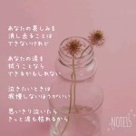 Photo Poem 涙
